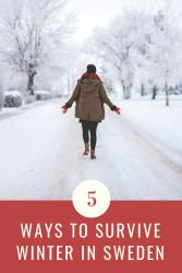 Petite Adventures - Five Ways to Survive Winter in Sweden [kateslean.com]